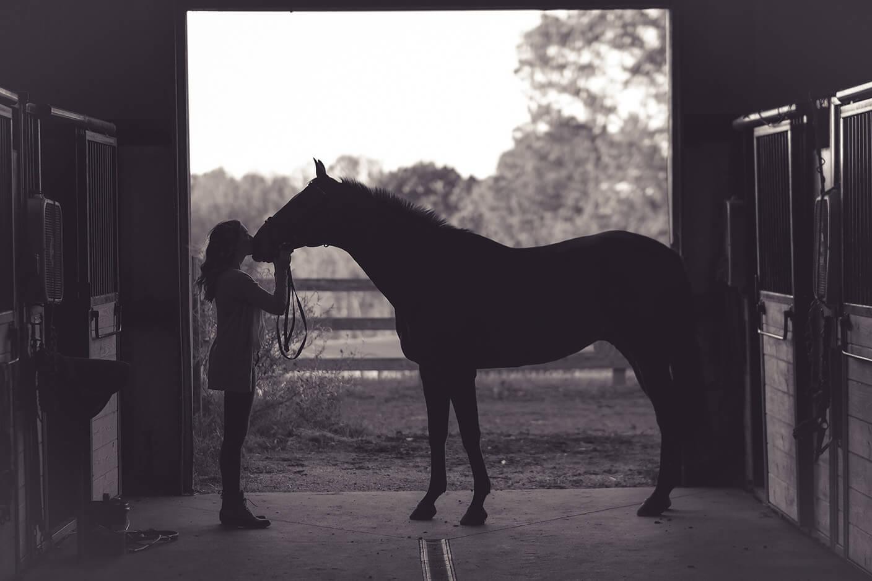 Equestrian Center Roma Cavallo Scuderia