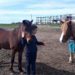Pony Club Roma Equestrian Center Esterno