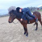 Pony Club Roma Equestrian Center Dettaglio
